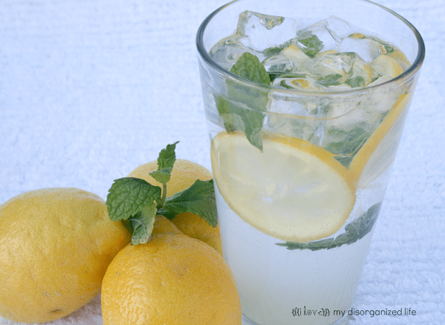 Vodka Mint Collins Cocktail