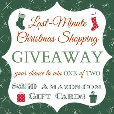Last Minute Christmas Shopping Giveaway!