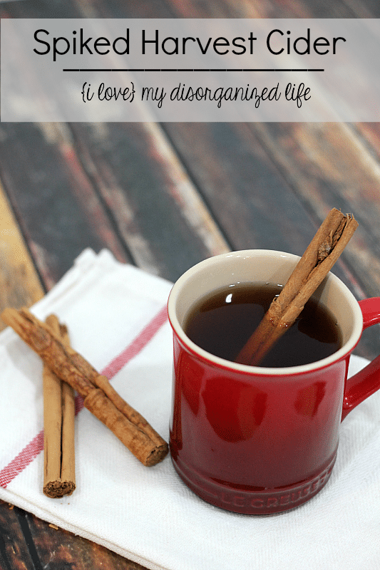 Spiked cider is a delightfully warming drink. Perfect for chilly nights!