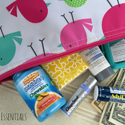 Top 5 Purse Essentials