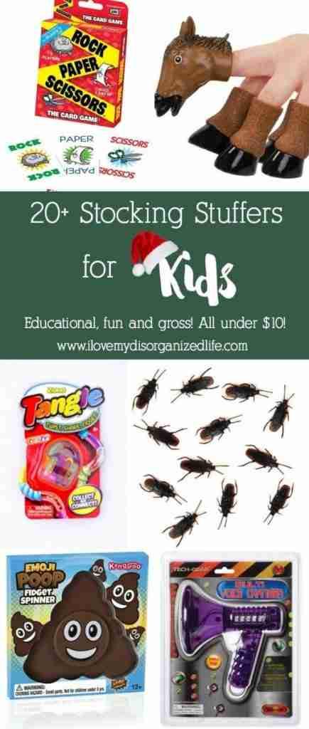 Stumped on stocking stuffers for kids? No problem, I've got plenty for you to choose from- educational, funny and gross!