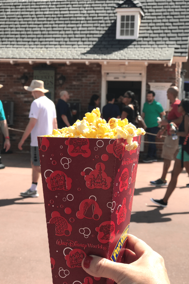 Looking for the Best Walt Disney World Treats? Look no further! I recently had an amazing adventure at Walt Disney World and today I'm sharing tons of amazing food available at the parks!
